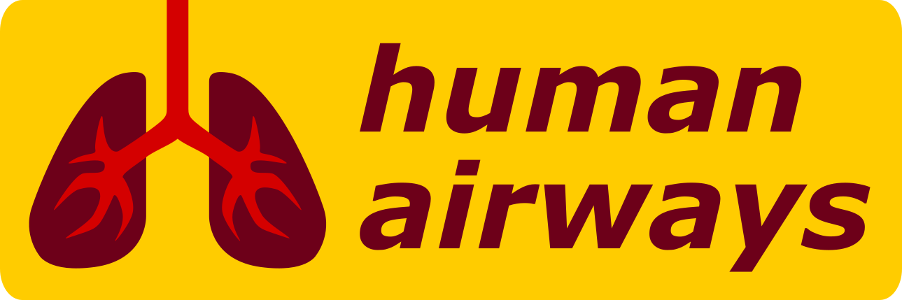 Human Airways